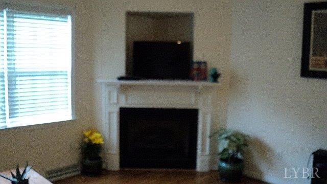 Split Level, Single Family Residence - Lynchburg, VA (photo 3)