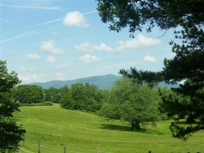 Single Family Residence, Ranch - Amherst, VA (photo 5)