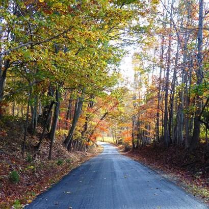 Unimproved Land - Goode, VA (photo 3)