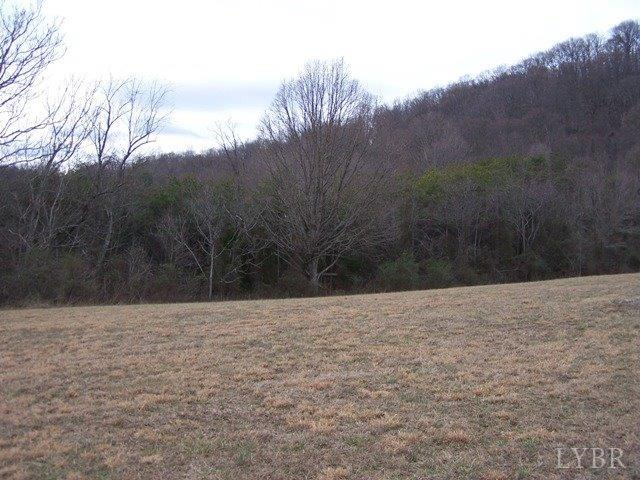 Land - Monroe, VA (photo 2)