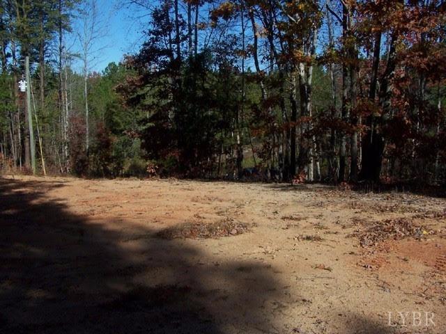 Land - Clarksville, VA (photo 3)