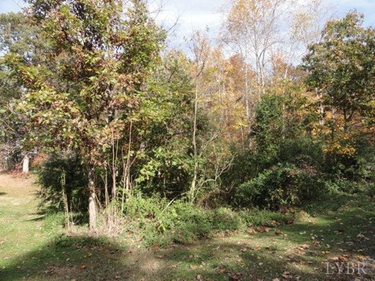 Unimproved Land - Concord, VA (photo 3)