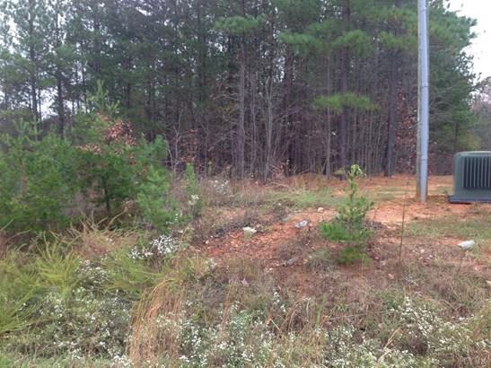 Land - Altavista, VA (photo 5)