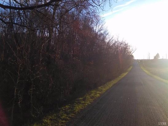 Land - Amherst, VA (photo 2)