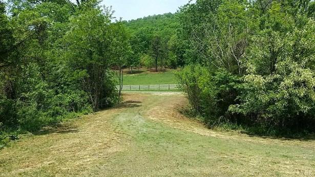Land - Amherst, VA (photo 5)