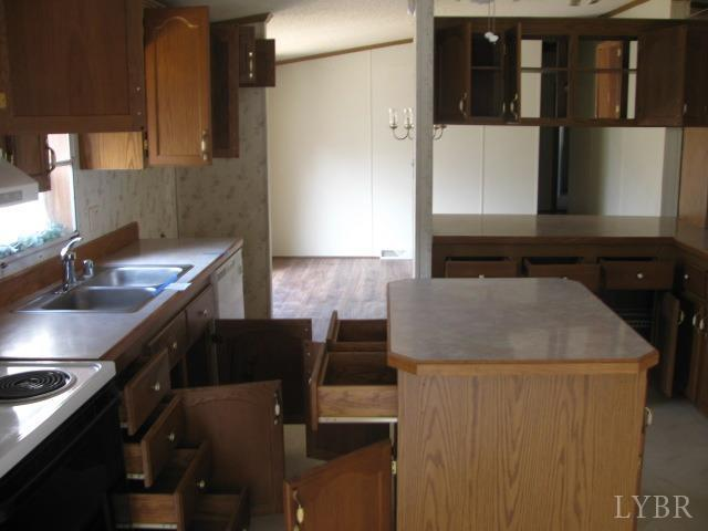 Single Family Residence, Doublewide - Rustburg, VA (photo 4)