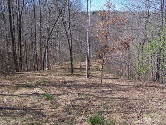 Land - Lynchburg, VA (photo 4)