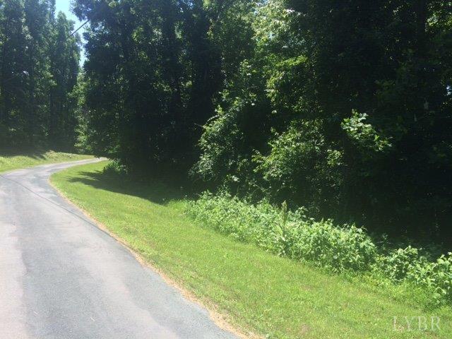 Unimproved Land - Amherst, VA (photo 2)