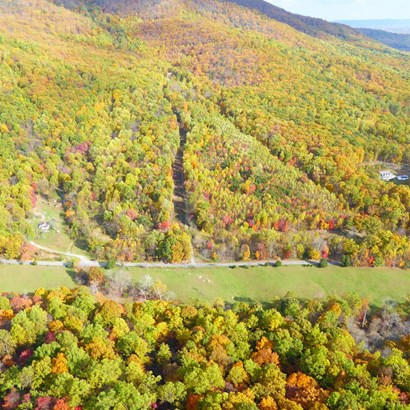 Unimproved Land - Goode, VA (photo 1)