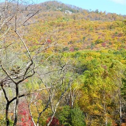 Unimproved Land - Goode, VA (photo 2)