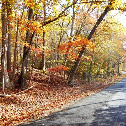 Unimproved Land - Goode, VA (photo 4)
