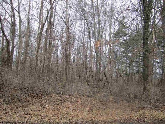 Residential Land - Morgantown, WV (photo 1)