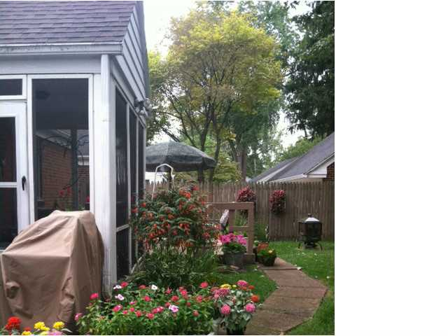 Elmhurst 4221, Toledo, OH - USA (photo 3)