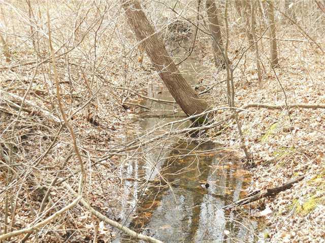 Fulton Lucas Rd 5531, Swanton, OH - USA (photo 3)