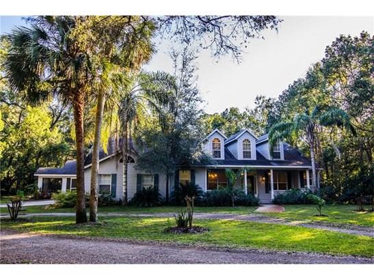 Single Family Home, Custom,Other - ORANGE CITY, FL (photo 1)