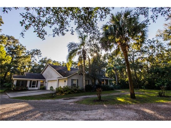 Single Family Home, Custom,Other - ORANGE CITY, FL (photo 2)