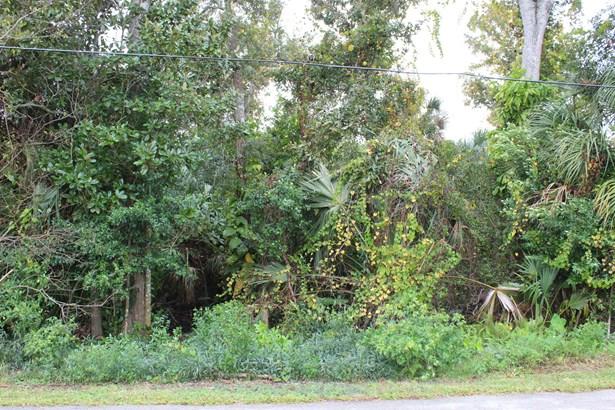 Single Family Development - Ormond Beach, FL