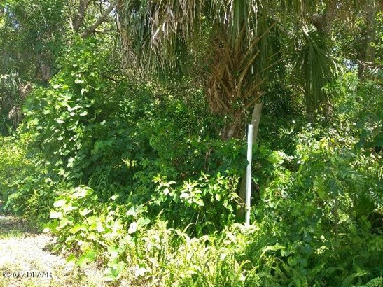 Single Family Lot - Pierson, FL (photo 4)