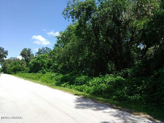 Single Family Lot - Pierson, FL (photo 5)