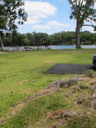 Ranch, Single Family - Astor, FL (photo 5)