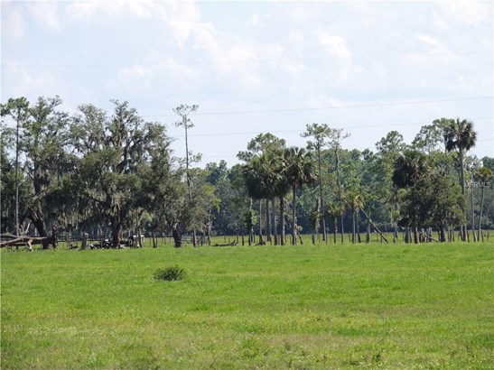 Industrial - DE LEON SPRINGS, FL (photo 3)