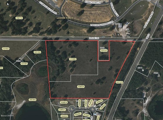 Single Family Development - Umatilla, FL (photo 1)