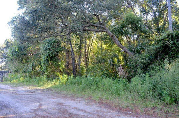 Single Family Lot - Pierson, FL (photo 1)