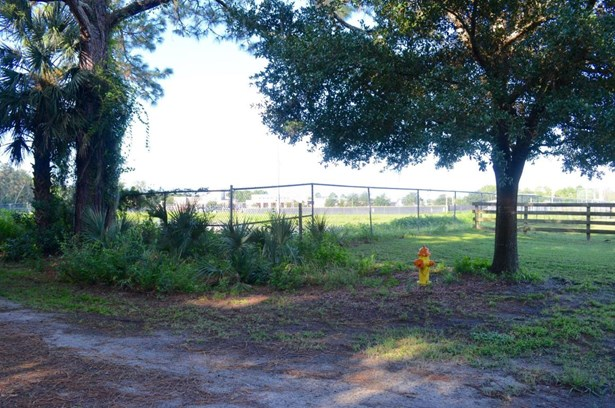 Single Family Lot - Pierson, FL (photo 3)