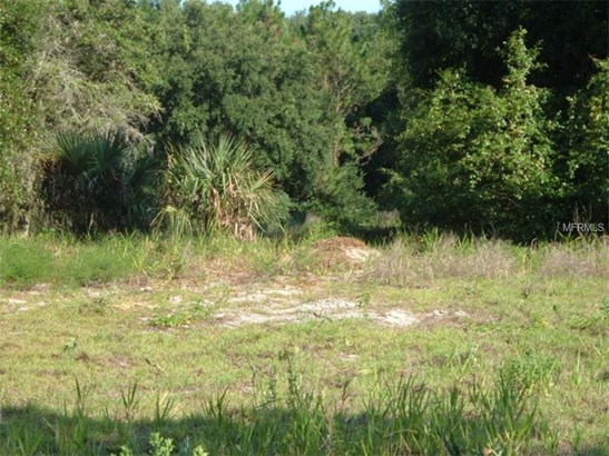 Single Family Use - SEVILLE, FL (photo 2)