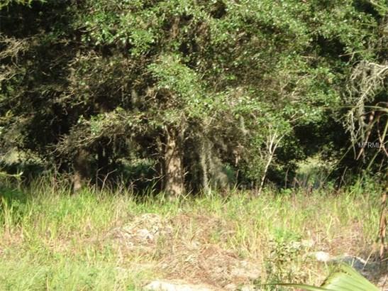Single Family Use - SEVILLE, FL (photo 4)