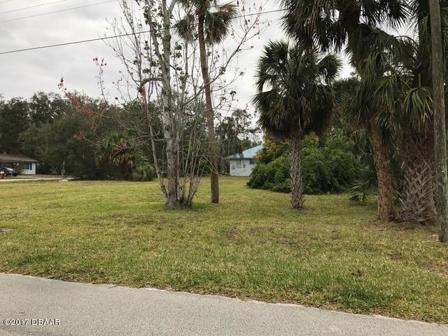Single Family Lot - Port Orange, FL (photo 2)