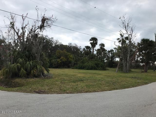 Single Family Lot - Port Orange, FL (photo 4)