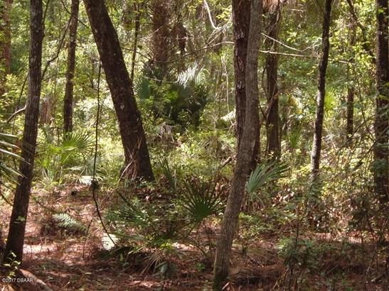 Single Family Lot - Pierson, FL (photo 3)