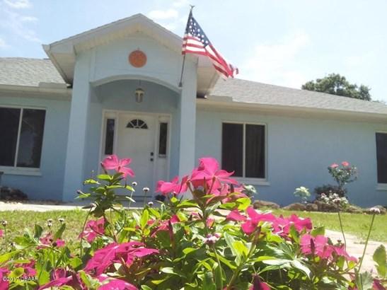 Ranch, Single Family - New Smyrna Beach, FL (photo 1)