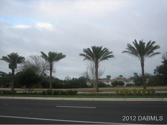 Commercial Land - South Daytona, FL (photo 1)