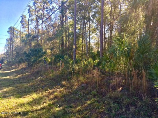 Single Family Lot - Port Orange, FL (photo 1)