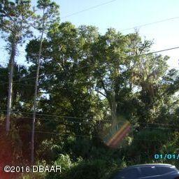 Single Family Lot - Port Orange, FL (photo 4)