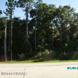Single Family Lot - Port Orange, FL (photo 5)