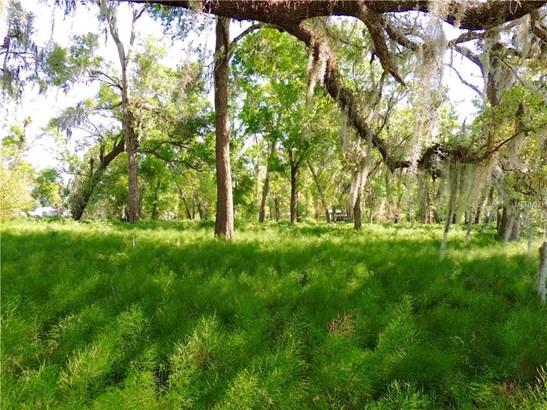 Farm - DE LEON SPRINGS, FL