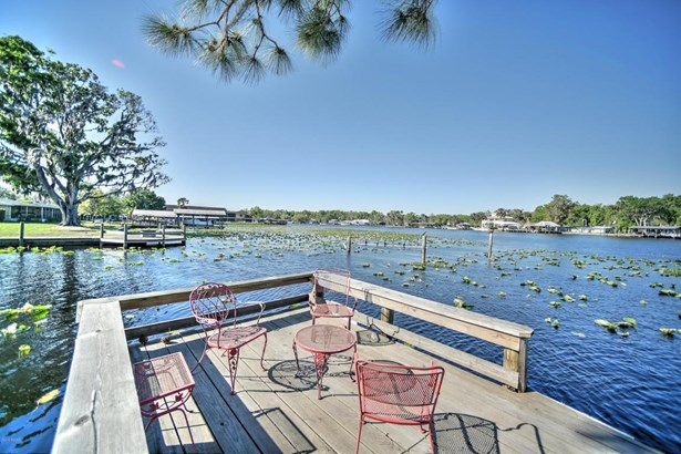 Single Family - Astor, FL (photo 3)