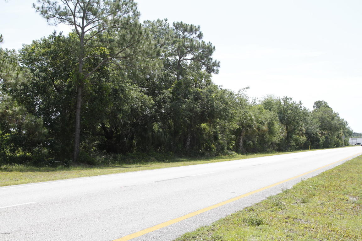 Commercial Land - Ormond Beach, FL (photo 3)
