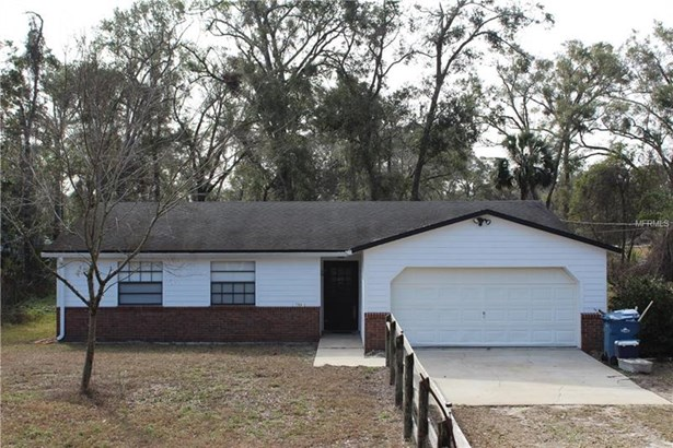 Single Family Home, Ranch - DE LEON SPRINGS, FL (photo 1)