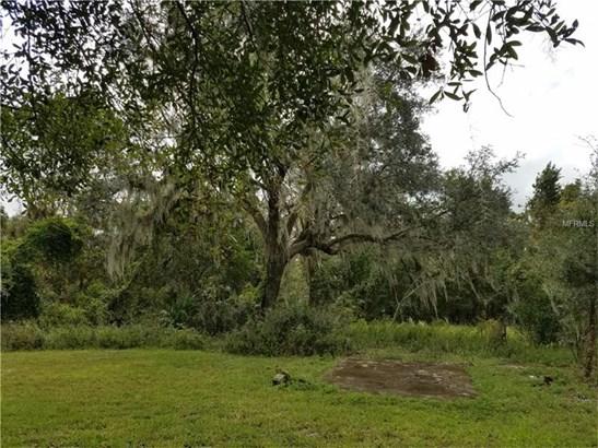 Single Family Home - DELAND, FL (photo 3)