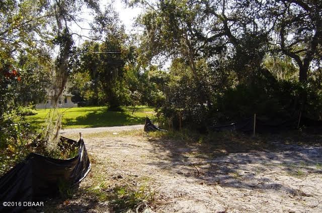Single Family Lot - Orange City, FL (photo 2)