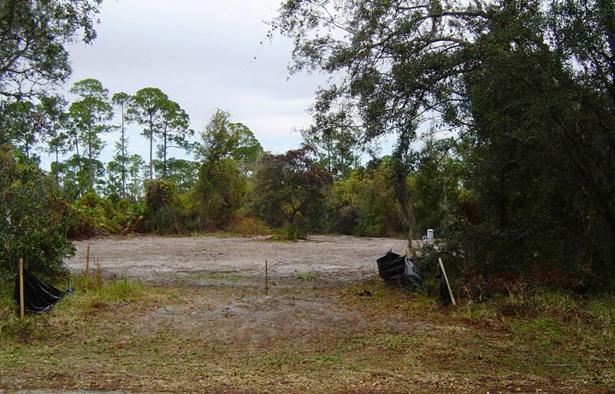 Single Family Lot - Orange City, FL (photo 4)