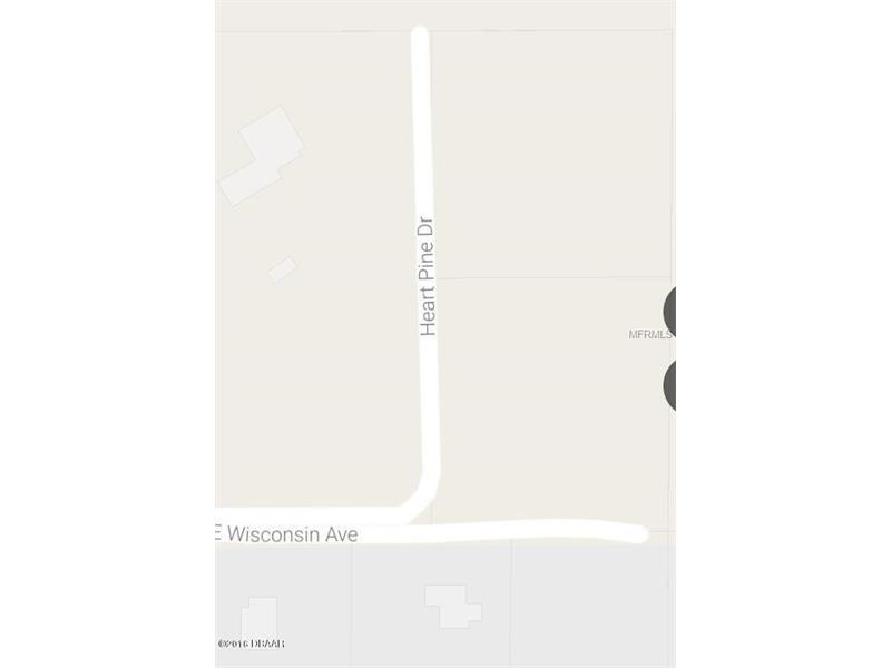 Single Family Use - ORANGE CITY, FL (photo 5)
