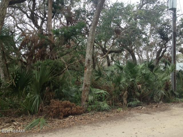 Single Family Lot - Ponce Inlet, FL (photo 2)