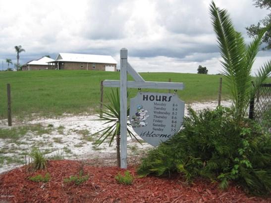 Ranch, Single Family - DeLand, FL (photo 4)