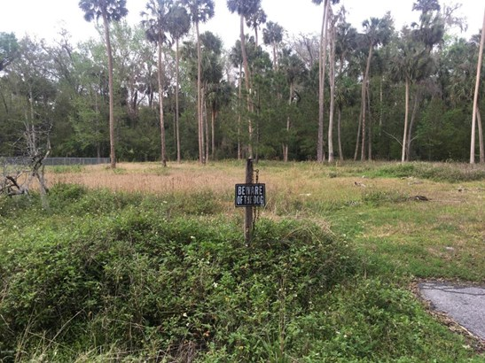 Single Family Lot - Astor, FL (photo 2)