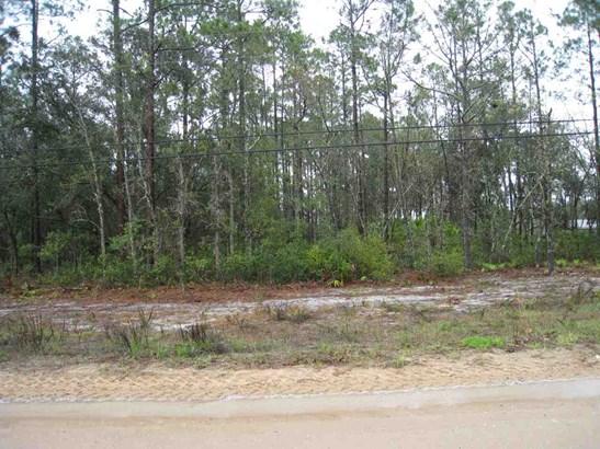 Residential-Open Builder - Hawthorne, FL (photo 4)